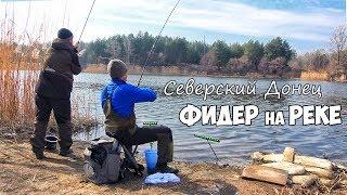 Рыбалка на ФИДЕР весной! ЛОВЛЯ на ФИДЕРНУЮ СНАСТЬ на СЕВЕРСКОМ ДОНЦЕ