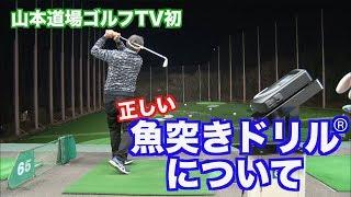 【お待たせ!!】山本道場ゴルフTV初!これが魚突きドリルの詳細だ👍① thumbnail