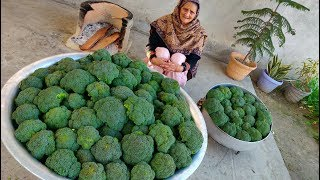 BROCCOLI RECIPE BY MY GRANNY | INDIAN STYLE | VILLAGE FOOD | VILLAGE COOKING | SABJI RECIPE