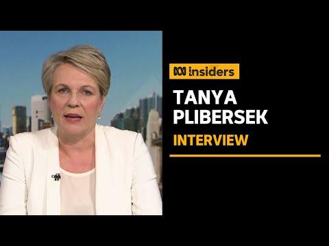 Tanya Plibersek slams proposed Federal Integrity Commission model as 'weak' and 'a joke' | Insiders