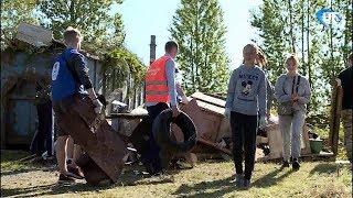 В Великом Новгороде провели субботник на территории будущего приюта для бездомных животных