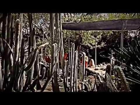 Moorten Botanical Gardens In Palm Springs