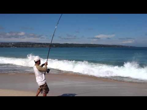 Fishing Bali from Beach BIG FISH