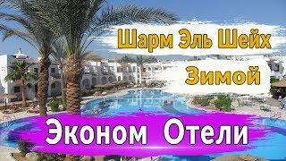 Отдых зимой Шарм Эль Шейх Эконом отели