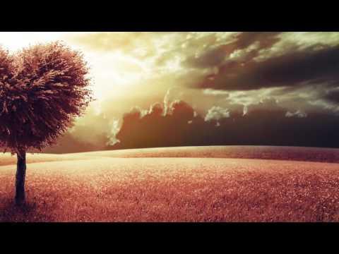 Jos & Eli, Sean Doron & Jenia Tarsol - Amore (Solee Remix)