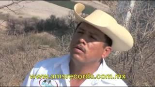 Los Armadillos de la Sierra - Lo mas Picudo de la Sierra