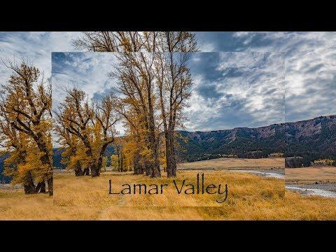 Lamar Valley, Yellowstone National Park - 4K
