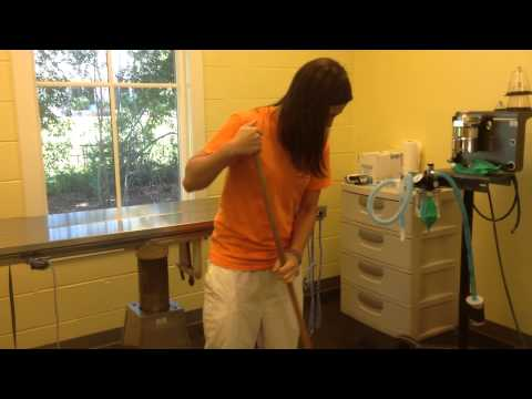 missy willis  cleaning and prepping surgery room part 2