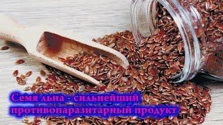 Семя льна - сильнейший противопаразитарный продукт