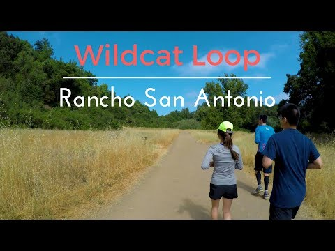 Rancho San Antonio - Wildcat Loop | Trail Run | 4K