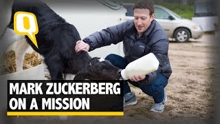 The Quint: Zuckerberg's Ohio Hosts Are Confident He Won't Run For Office