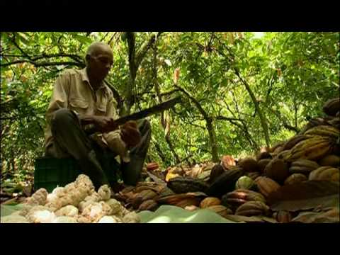 Felchlin about chocolate production (Part 1)