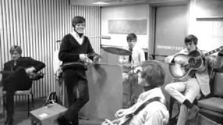 Watch Hermans Hermits Hold On video