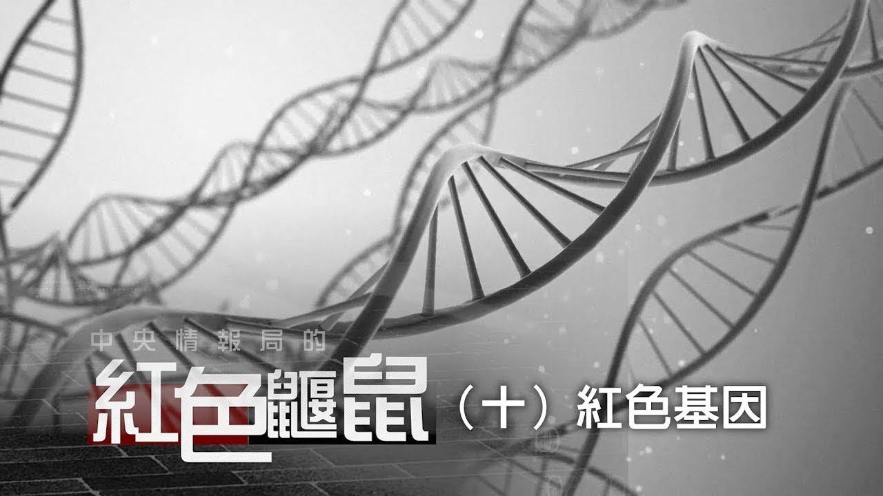 《中央情報局的紅色鼴鼠》(十)紅色基因
