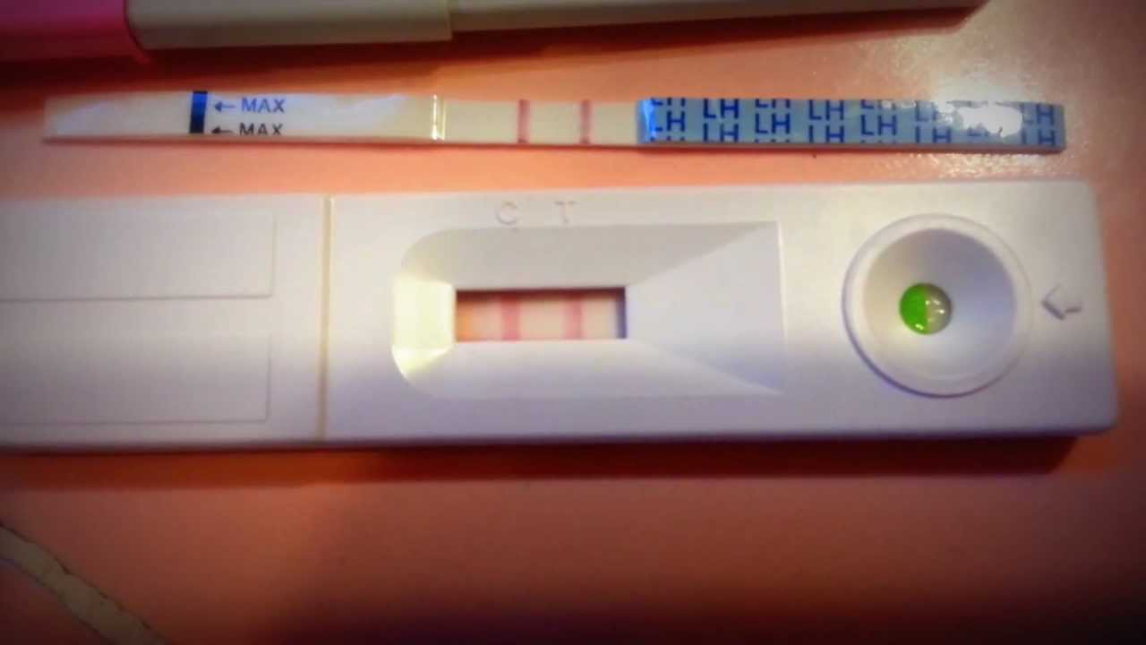 Ovulation test: how it works and how to use it 100