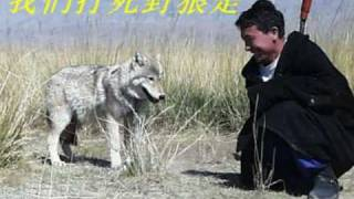 草原牧歌 - The Grassland Shepherd Song - 歌手: 黑鸭子 thumbnail