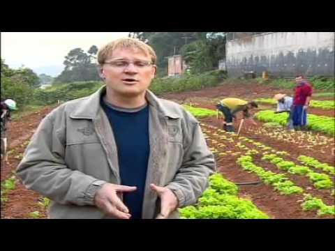 Reportagem TV Record sobre o Projeto Cidades sem Fome