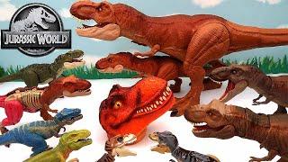 My Tyrannosaurus Rex Dinosaur Collection With Jurassic World! T-Rex Dinosaurs