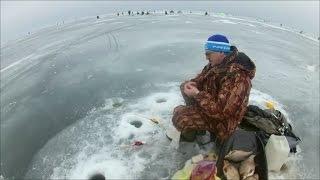 озеро ЧУДСКОЕ .д .ВЕТВЕНИК  .зимняя рыбалка .часть-1
