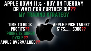 Apple Down 11% Buy Now or Wait for Further Dip?? Apple Stock Detailed Analysis