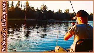 Уловистая прикормка на леща и подлещика. Рыбалка на фидер в августе. Река Сож