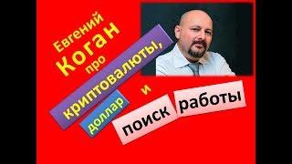 Евгений Коган про криптовалюты доллар и поиск работы