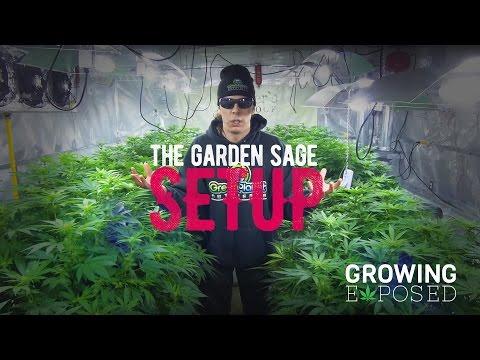 The Garden Sage Setup  The  Tour