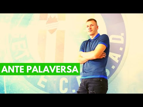 SCOUTING & TACTICAL ROLE   ANTE PALAVERSA   NEW MANCHESTER CITY PLAYER   PART 1