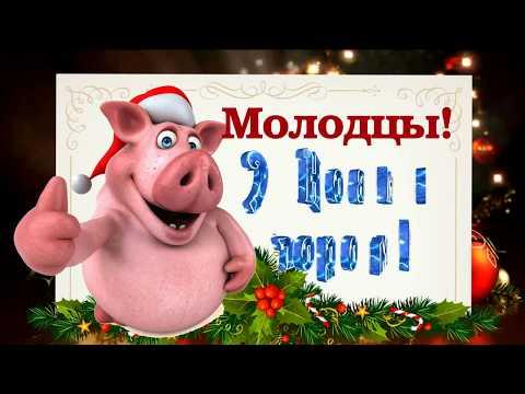 Новогодние загадки 2019. Загадки на новый год - год свиньи