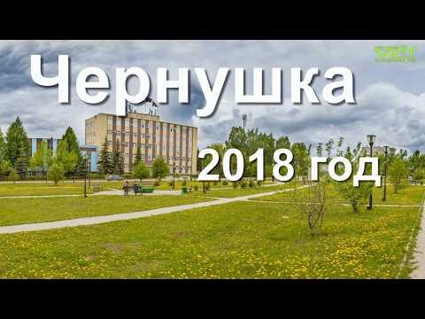 Чернушка. Праздничное шествие посвященное Дню города. 2018 год
