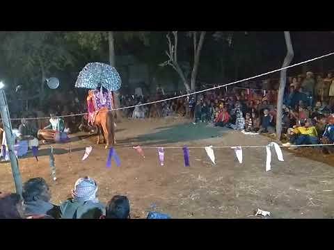 Real horse chou dance purulia @ dhan...
