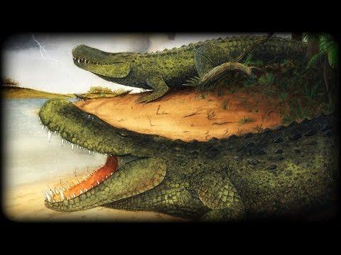 Prehistoric Beasts - Purussaurus - Gigantic Caiman - Documentary