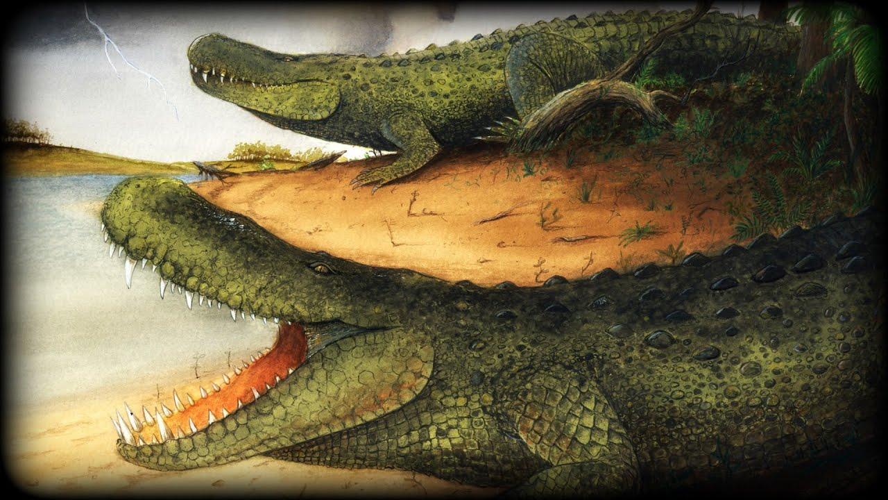 Purussaurus | www.pixshark.com - Images Galleries With A Bite!