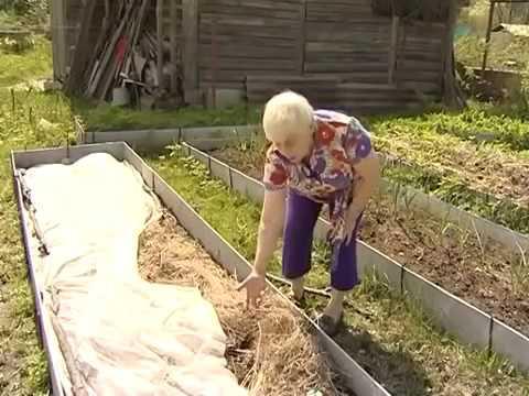 Огород для лентяя
