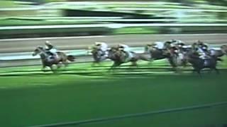 2005年日本短途馬錦標冠軍 精英大師