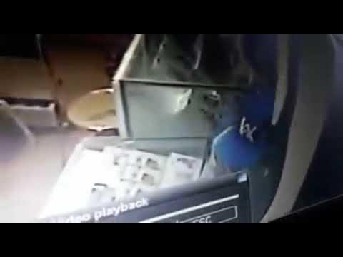 VIRAL!!! Hp apa saja yang diambil oleh pencuri ini? Di Aura Cell, Metro Lampung 5 Oktober 2017.