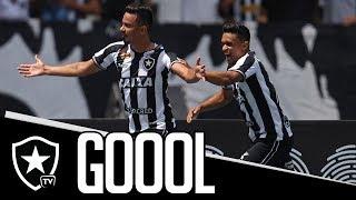 Gol   Botafogo 1 x 0 América-MG   Brasileirão