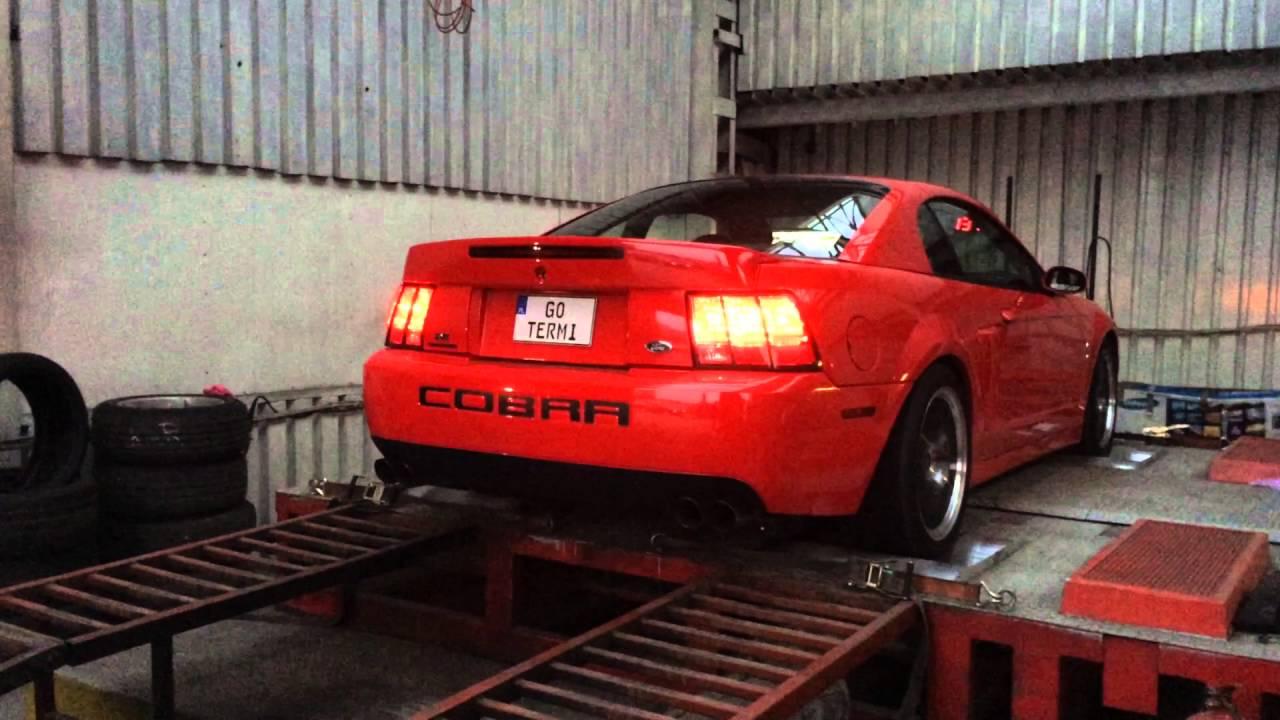Ford Mustang SVT Cobra Terminator 2003 Dyno Run Dyna-MIte ...