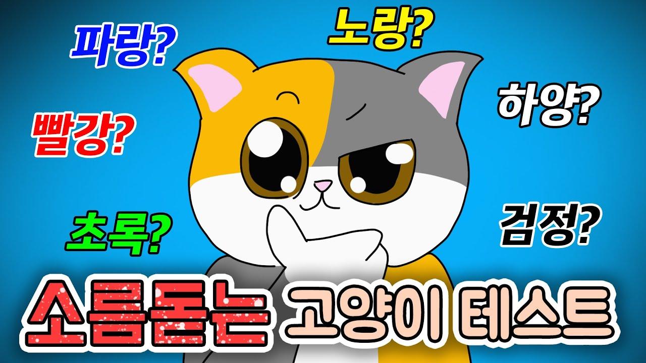이거 완전 잘맞네요 ㅋㅋ 고양이 성격 테스트! | 고양이산책