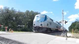 2015 10 24 Amtrak Silver Star 91 Single P42DC #39 Wilkinson Rd East Tampa  Milepost  A864 84