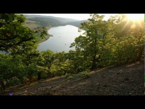 Naturschutzgrossprojekt Kellerwald-Region