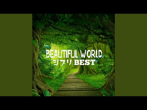 Provided to YouTube by TuneCore Japan 君をのせて (feat. 島本須美) · Jazzin'park · 島本須美 Beautiful World -ジブリ BEST- ℗ 2019 FARM RECORDS Released ...