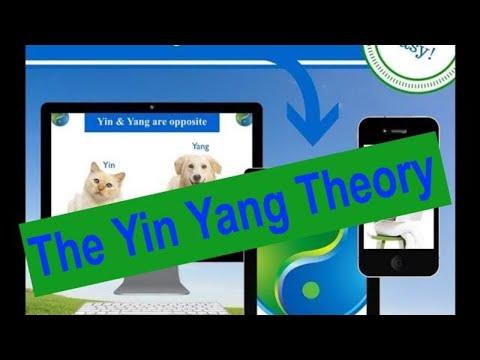 Yin Yang Theory in TCM