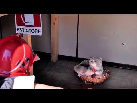 Pompierland a Ravina, pompieri per un giorno
