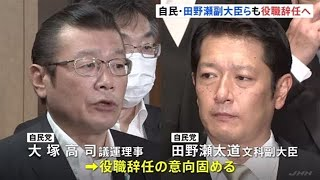 大臣 副 田野瀬 文科