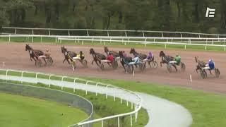 Vidéo de la course PMU PRIX DE COUËRON