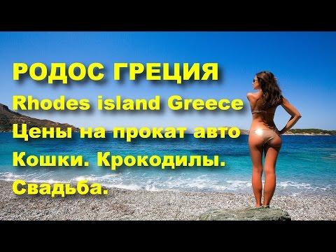 rhodes-greece-prices.-car-rental.-greek-svadba.grecheskie-cats.