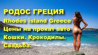 Родос Греция цены Прокат авто. Греческая свадьба.Греческие кошки. Rhodes / Greece(НОВОЕ ВИДЕО: