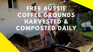 Local Australian Coffee Grounds Collected & Composted at Martys Garden