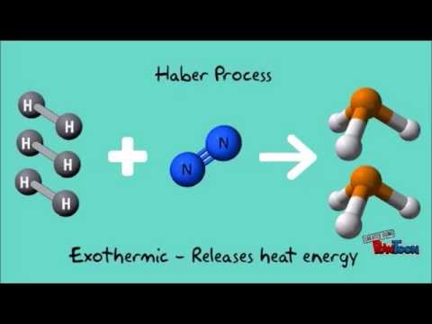 IChemE student video winner: Let's design a Haber process plant